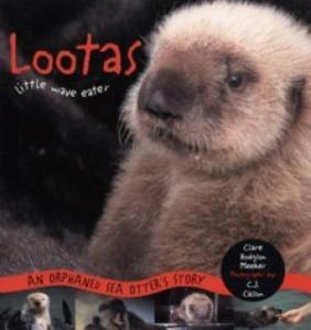 Lootas_0