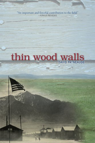 ThinWoodWalls